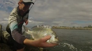 Video: Bream from the breakwall